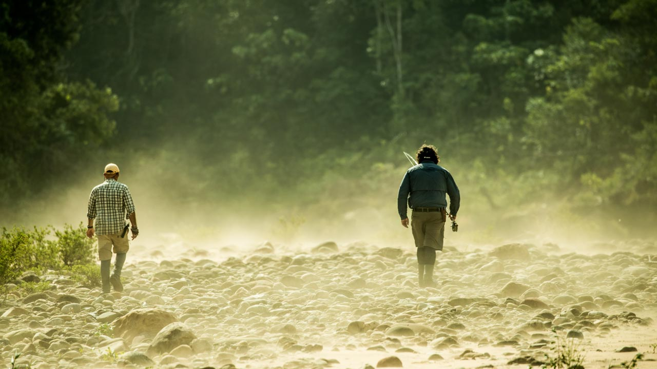 Carter Andrews