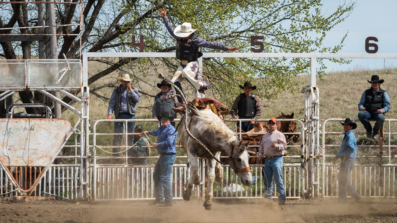 Korkow Rodeo School